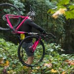 State Bicycle Co Thunderbird Singlespeed Cyclocross Bicycle Pink-6195